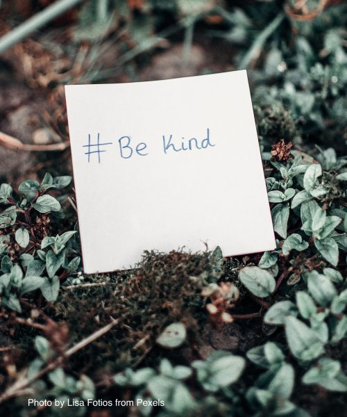 white-printer-paper-with-be-kind-text-on-plants-3972441